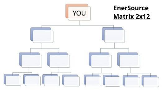 EnerSource's Force Matrix layout of their 2x12 structure